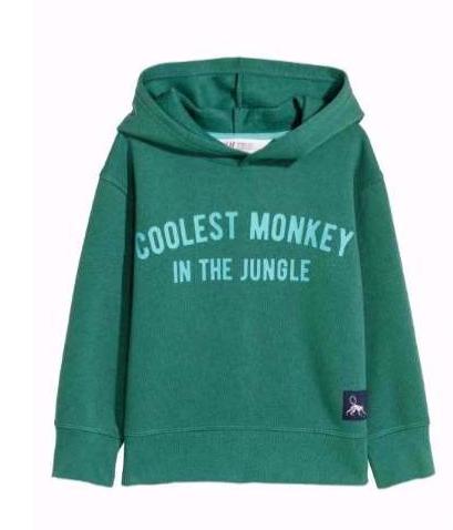 Coolest Monkey Sweatshirt